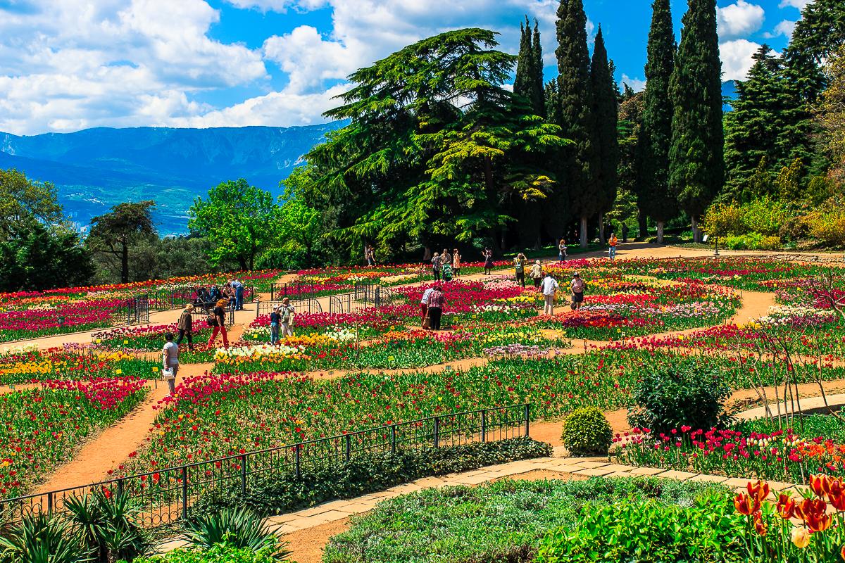 Никитский Ботанический сад 1